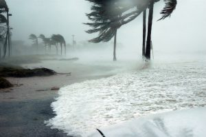 Florida hurricane season